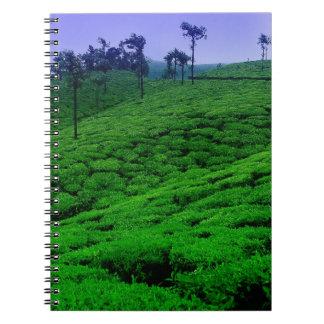 Tea plantation notebooks