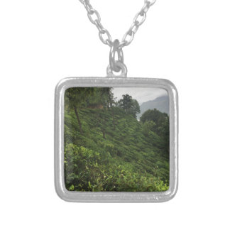 Tea Plantation Silver Plated Necklace
