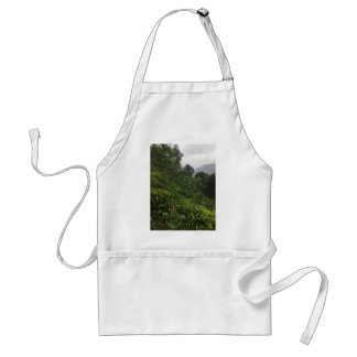 Tea Plantation Standard Apron