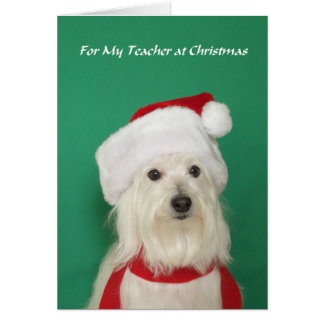 Teacher Christmas Card -- Cute Dog