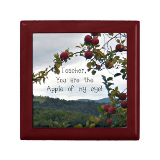 Teacher, you are the apple of my eye! gift box