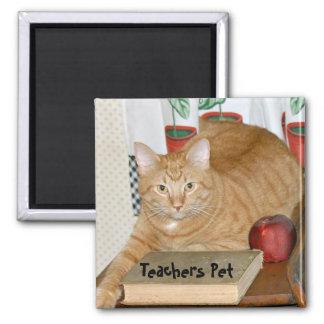 Teacher's Pet Square Magnet