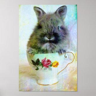Teacup Bunny Poster