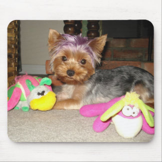Teacup Yorkie Purple Princess  Mouse Pad