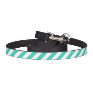 Teal and White Diagonal Stripes Pattern Dog Lead