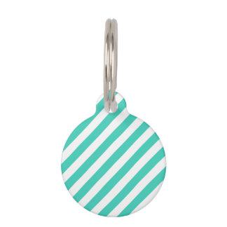 Teal and White Diagonal Stripes Pattern Pet Tag