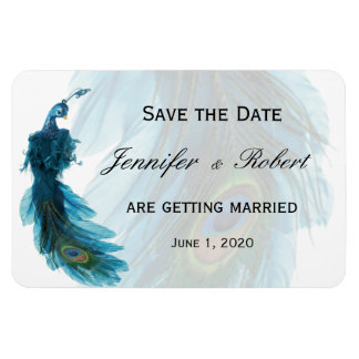 Teal Blue Peacock Plume Wedding Magnet