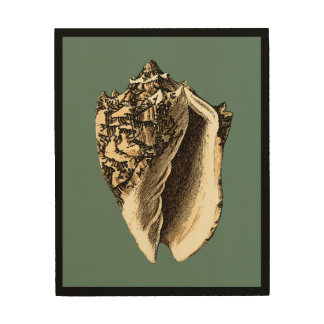 Teal Conch Shell Wood Wall Decor