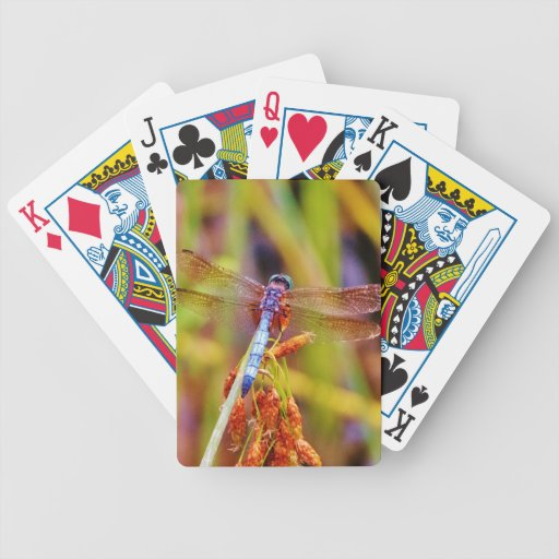 Teal Dragonfly on sedge Bicycle Poker Cards