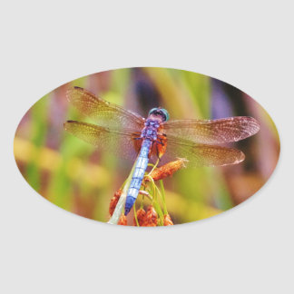 Teal Dragonfly on sedge Sticker