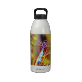 Teal Dragonfly on sedge Drinking Bottle