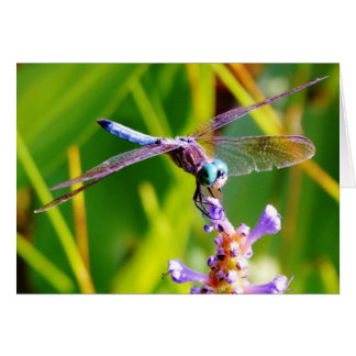 Teal & purple Dragonfly Card