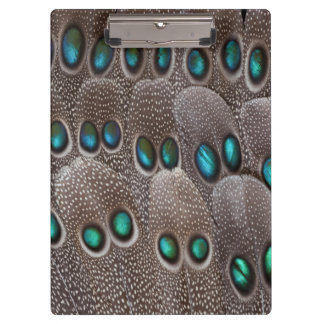 Teal spotted pheasant feather clipboard