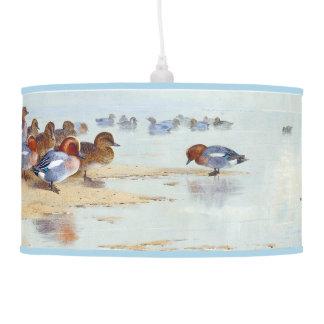 Teal Wigeon Duck Bird Animal Wildlife Hanging Lamp