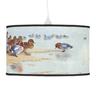 Teal Wigeon Duck Bird Animal Wildlife Hanging Lamp
