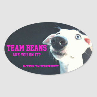 Team Beans oval sticker
