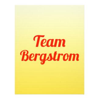 Team Bergstrom Custom Flyer