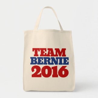 Team Bernie 2016