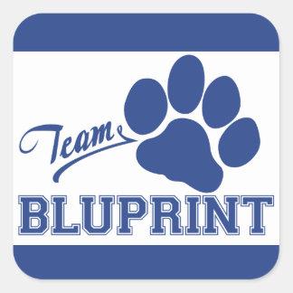 Team BluPrint Square Stickers
