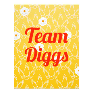 Team Diggs Full Color Flyer