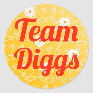 Team Diggs Stickers