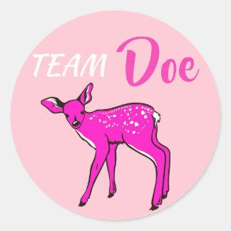 """""""Team Doe"""" Pink Gender Reveal Classic Round Sticker"""