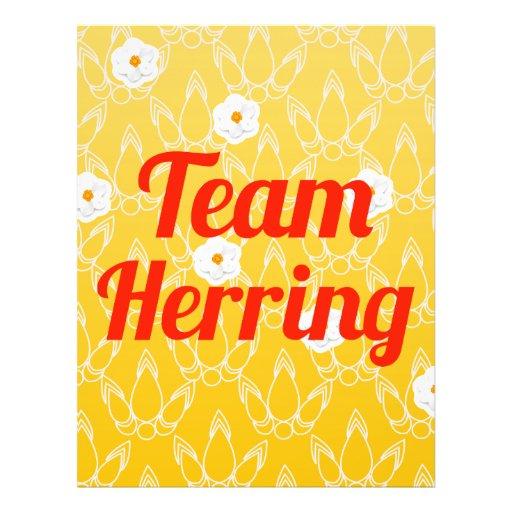 Team Herring Full Color Flyer
