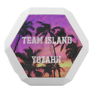 Team Island Speaker