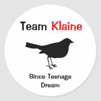 Team Klaine Round Sticker