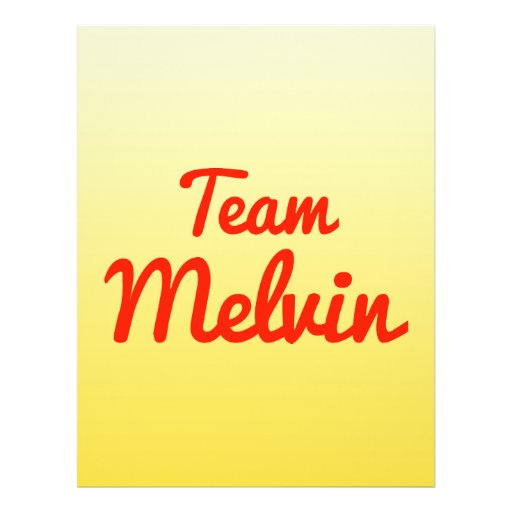 Team Melvin Flyer Design