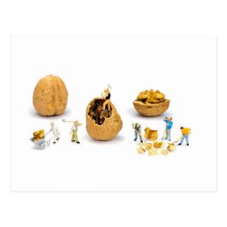 Team of miniature figurines transporting walnut postcard