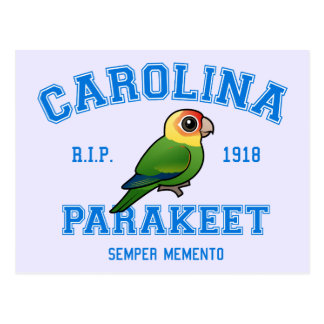 Team Parakeet Postcard
