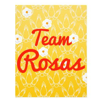 Team Rosas Custom Flyer