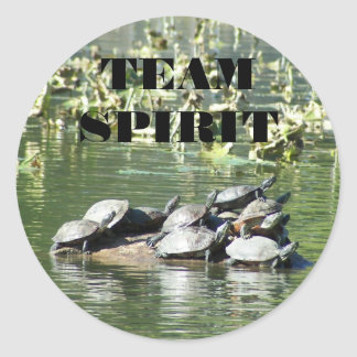 Team Spirit Turtle Photo Motivational Classic Round Sticker