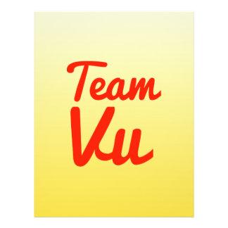 Team Vu Custom Flyer