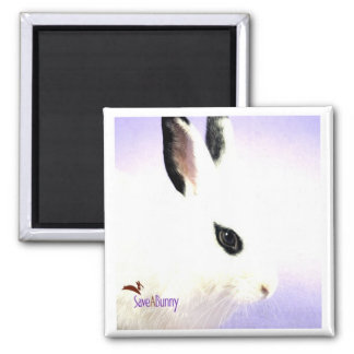 Teardrop Bunny Square Magnet
