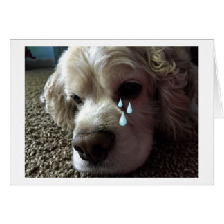 "TEARY EYED COCKER SPANIEL SAYS ""I MISS YOU"" CARD"