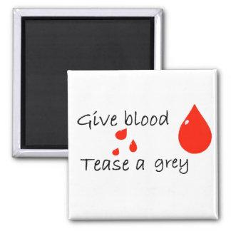 Tease a grey magnet