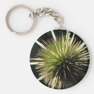 Teasel on display keychain