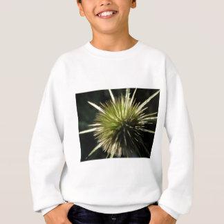 Teasel on display sweatshirt