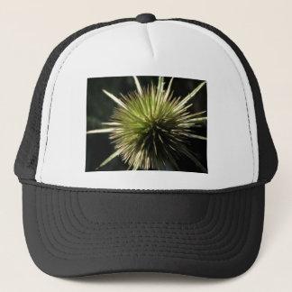 Teasel on display trucker hat