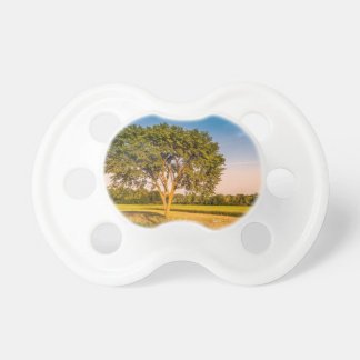 Teat of baby, photograph of a tree in fields pacifier