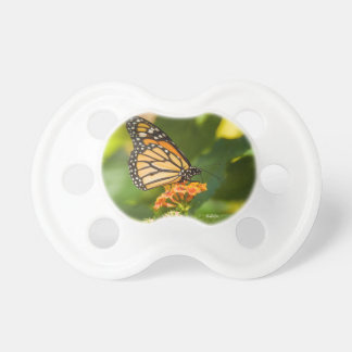 teat of photo baby of a butterfly on a flower pacifier
