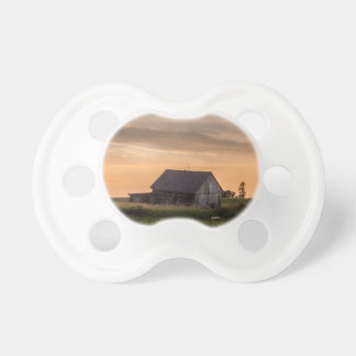 Teat of photo baby of a small barn pacifier