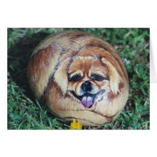 """Teddi Bear"" dog rock card"