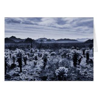 Teddy Bear Cholla Cactus Desert Plants Card