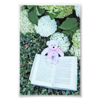 teddy bear hydrangeas and book photographic print
