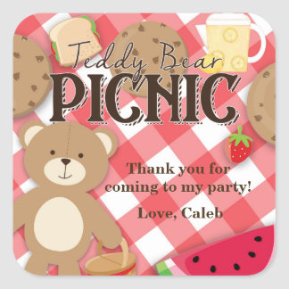 Teddy Bear Picnic Summer Birthday Party Favor Square Sticker