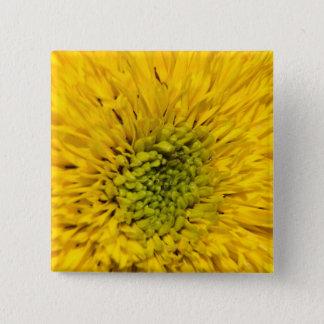 Teddy Bear Sunflower Button