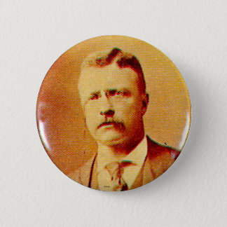 Teddy Roosevelt - Button